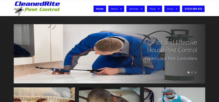 new website for Pest Control in London
